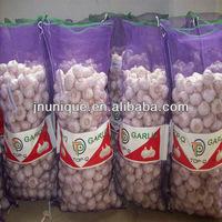 fresh normal white garlic made in china