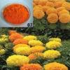 Lutein , marigold extract , lutein powder