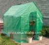 PE& large green greenhouses