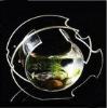 Acrylic goldfish bowl