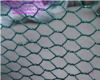 hexagonal wire mesh(manufacture or export)