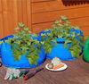 PP garden planter bag / grow bag