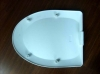 toilet front cover mold