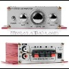 Hi-Fi Stereo Audio Power Amplifier Car PC Music Power USB SD FM 3 in 1
