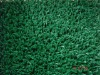artificial turf/synthetic grass/sports turf/landscape grass