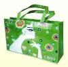 2012 hot sale pp non woven fabric shopping bag