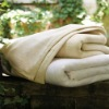 Four Seasons Micro Fleece Plush Solid Blanket