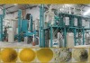 Maize roller mill with plansifter7TPD