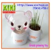 New Design Growing Grass Head Toy Promotional Toys For Kids