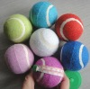 Colourful pet tennis balls