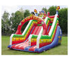 inflatable fancy slide/cheap inflatable bouncers