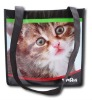 120G full color printing non woven advertising bag