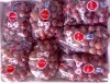 2012 new crop fresh grape in china ,yunnan grape,(Bangladesh market)