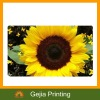 Flower Fridge Magnet Or Custom Images