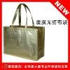 ecomonic nonwoven shopping bag