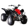 110CC off-road mini ATV QUAD ATV