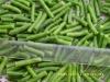Frozen vegetable:frozen green beans