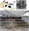 cattle house fan