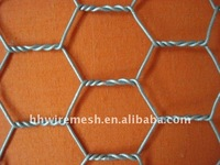 1/2'' 5/8'' chicken coop galvanized wire mesh