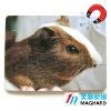 hamster mouse rat Magnetic Puzzle diecut 12pcs DIY Toy