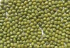Mung Beans for Sprout