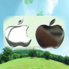 Apple mobile phone exquisite metal paste