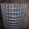 XT hot sale weld wire mesh