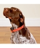 Bark Stop Collar , Anti-barking Dog Collar for Medium and Big Dogs