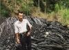 Oak charcoal for BBQ