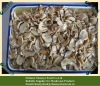 Canned mushroom pieces 800g