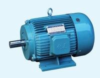 Y series electric motor