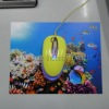Repeated use and mobile mouse mat
