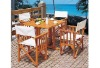 Folding Outdoor Wood Table and Chair