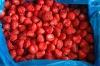 forzen Strawberry
