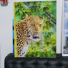 LIVELY PS 4mm 3D Lenticular Picture animal