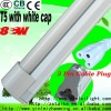 T5 fluorescent lamp with white cap 8W