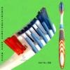 dental toothbrush, children toothbrush, personalized toothbrush