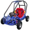 49CC Go Kart CE