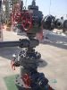 Wellhead & Xmas tree assembly