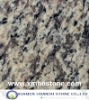 Tiger skin white-Granite slab