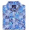 men's clothing-shirt