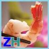 PUD vannamei shrimp