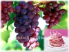 Grape skin extract for wine red color for food coloring
