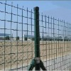 PVC coating Holland mesh fence