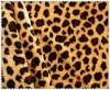 Fashion fabric 100% polyester camel printed fleece fabric
