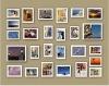 multi colour wooden photo frame