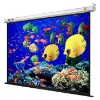 16:9  Electric Screen  /  projection  screen /  projector screens