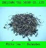 White Tea Baimudan/White Peony