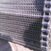 chain link SS 304 conveyor mesh belt (factory)