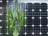 polycrystalline silicon solar module